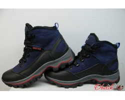 Ботинки подростковые Ecco зимние кожаные синие E0010
